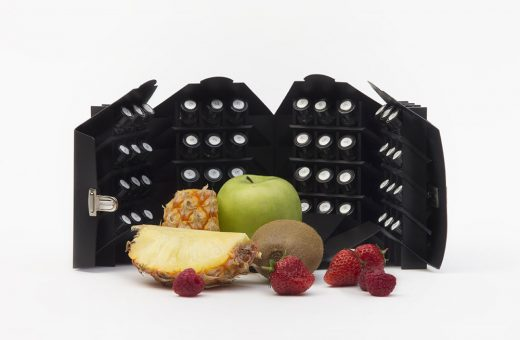 fruitee.jpg